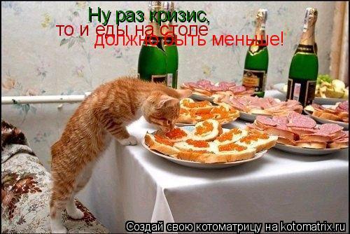 Котоматрица: Ну раз кризис,  то и еды на столе должно быть меньше!