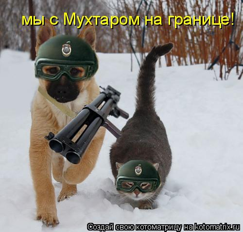 Котоматрица: мы с Мухтаром на границе!