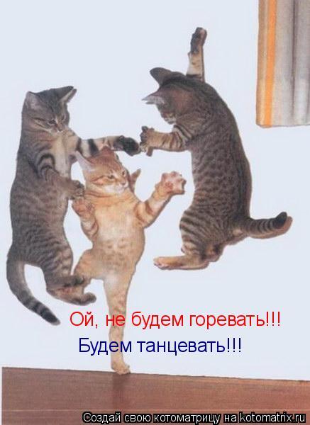 Котоматрица: Ой, не будем горевать!!! Будем танцевать!!!