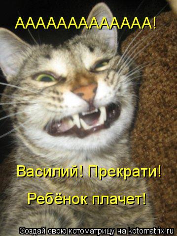 Котоматрица: ААААААААААААА! Василий! Прекрати! Ребёнок плачет!