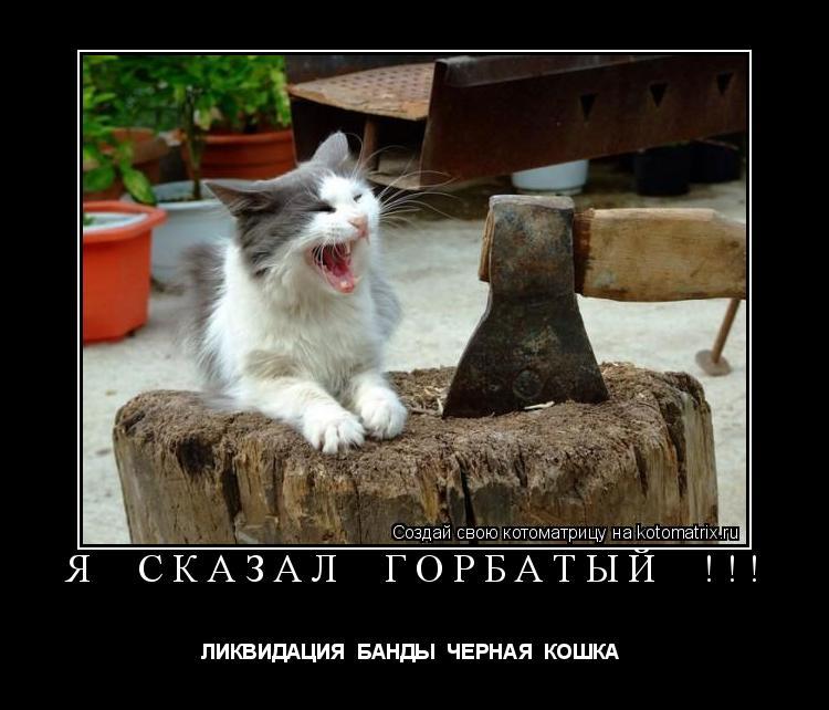 Котоматрица: Я  СКАЗАЛ  ГОРБАТЫЙ  !!! ЛИКВИДАЦИЯ  БАНДЫ  ЧЕРНАЯ  КОШКА