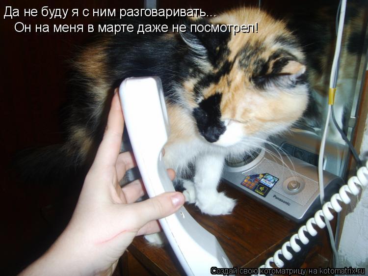 Котоматрица: Да не буду я с ним разговаривать... Он на меня в марте даже не посмотрел!