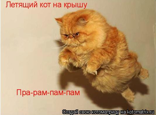 Котоматрица: Летящий кот на крышу Пра-рам-пам-пам