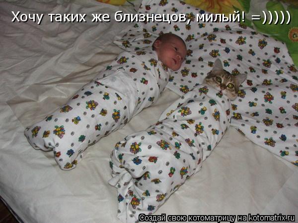 Котоматрица: Хочу таких же близнецов, милый! =)))))