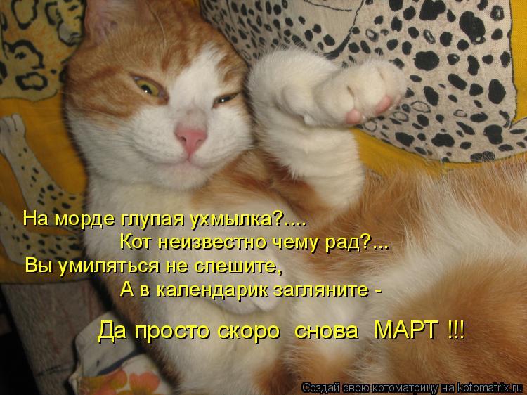 Котоматрица: На морде глупая ухмылка?.... Кот неизвестно чему рад?... Вы умиляться не спешите,  А в календарик загляните -  Да просто скоро  снова  МАРТ !!!