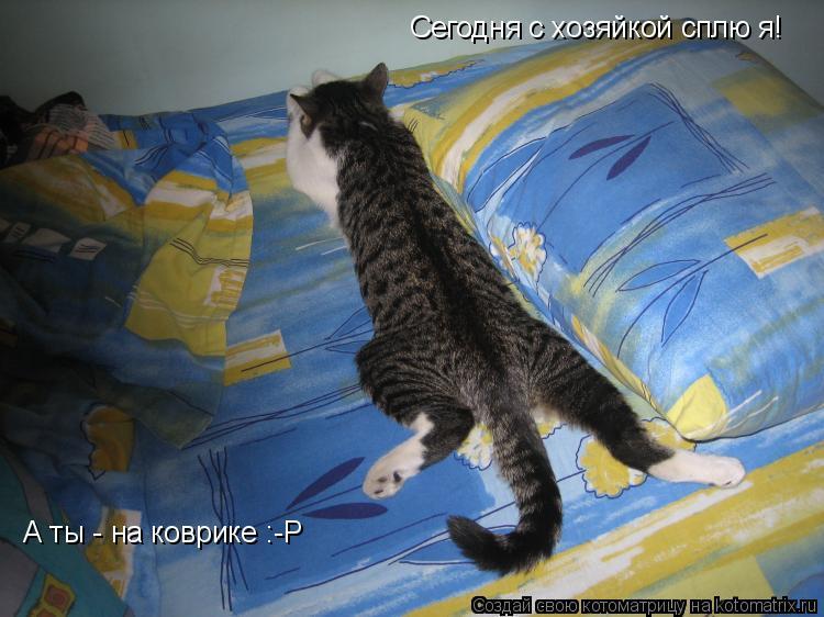 Котоматрица: Сегодня с хозяйкой сплю я! А ты - на коврике :-P