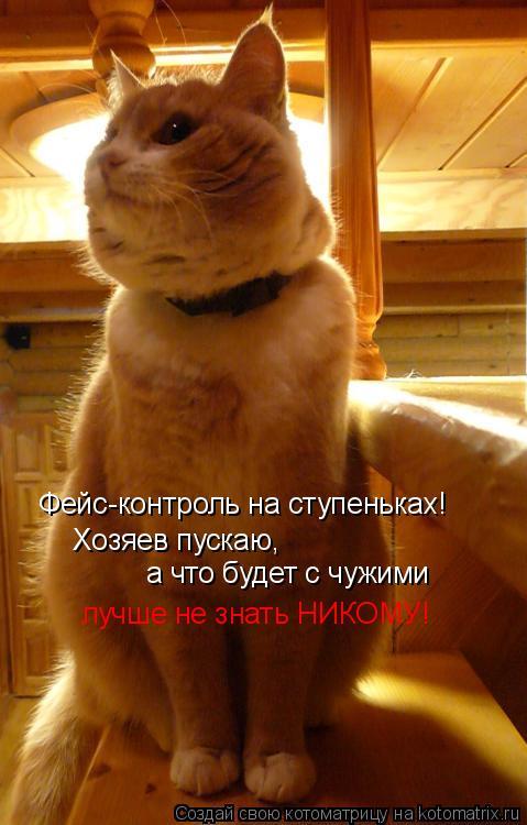 Котоматрица: Фейс-контроль на ступеньках! Хозяев пускаю, а что будет с чужими лучше не знать НИКОМУ!