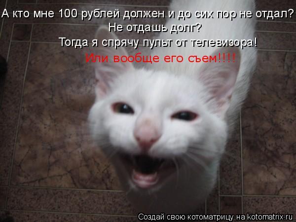 Котоматрица: А кто мне 100 рублей должен и до сих пор не отдал? Не отдашь долг? Тогда я спрячу пульт от телевизора! Или вообще его съем!!!!
