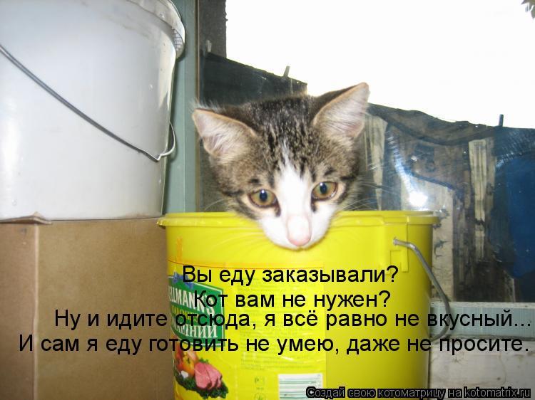 Котоматрица: Вы еду заказывали? Кот вам не нужен? Ну и идите отсюда, я всё равно не вкусный... И сам я еду готовить не умею, даже не просите.