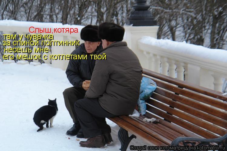 Котоматрица: Слыш,котяра там у чувачка  за спиной полтинник несешь мне- его мешок с котлетами твой