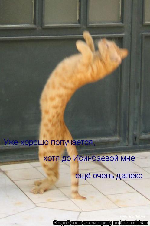 Котоматрица: Уже хорошо получается хотя до Исинбаевой мне  ещё очень далеко ,