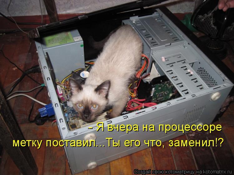 Котоматрица: - Я вчера на процессоре  метку поставил...Ты его что, заменил!?