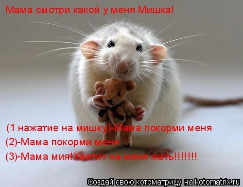 Котоматрица: Мама смотри какой у меня Мишка! (1 нажатие на мишку)-Мама покорми меня (2)-Мама покорми меня (3)-Мама мия!Хватит на меня жать!!!!!!!