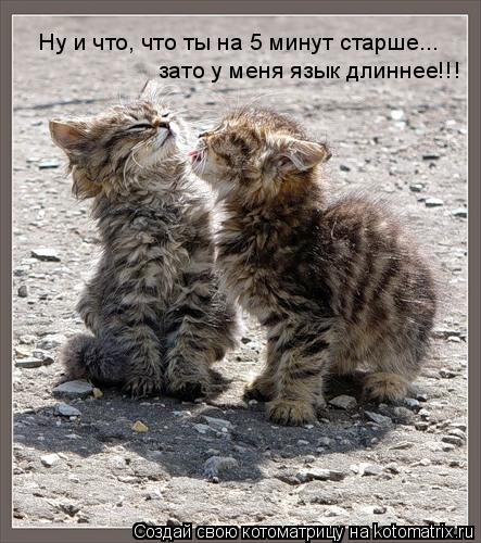 Котоматрица: Ну и что, что ты на 5 минут старше...  зато у меня язык длиннее!!!