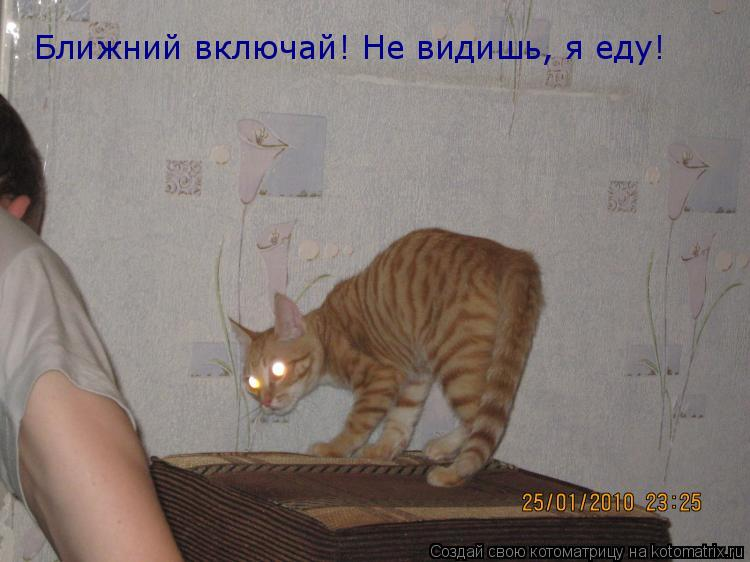 Котоматрица: Ближний включай! Не видишь, я еду!