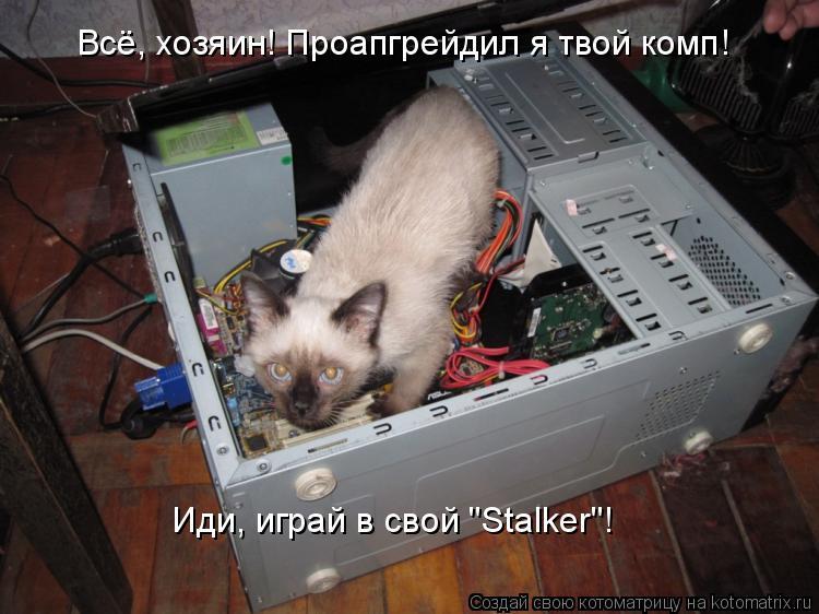 """Котоматрица: Всё, хозяин! Проапгрейдил я твой комп! Иди, играй в свой """"Stalker""""!"""