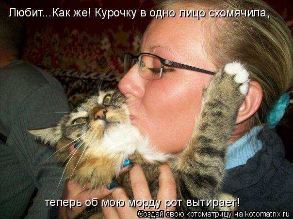 Котоматрица: Любит...Как же! Курочку в одно лицо схомячила,  теперь об мою морду рот вытирает!
