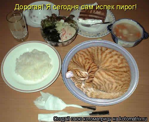 Котоматрица: Дорогая! Я сегодня сам испек пирог!
