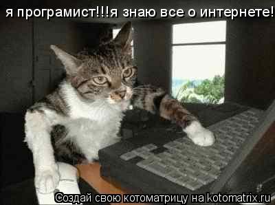 Котоматрица: я програмист!!!я знаю все о интернете!!!                                                                                     я програмист!!!я знаю все