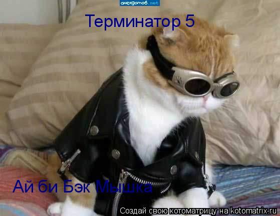 Котоматрица: Терминатор 5 Ай би Бэк Мышка