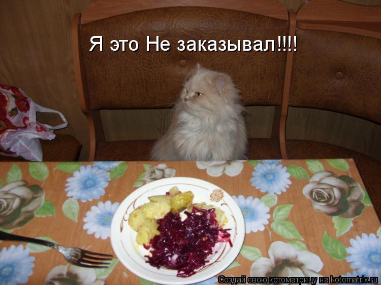 Котоматрица: Я это Не заказывал!!!!