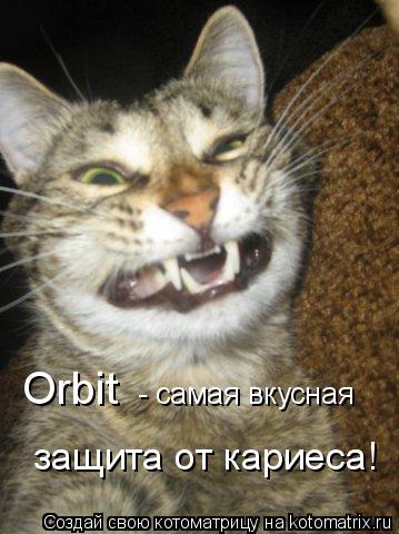 Котоматрица: Orbit   - самая вкусная  защита от кариеса!