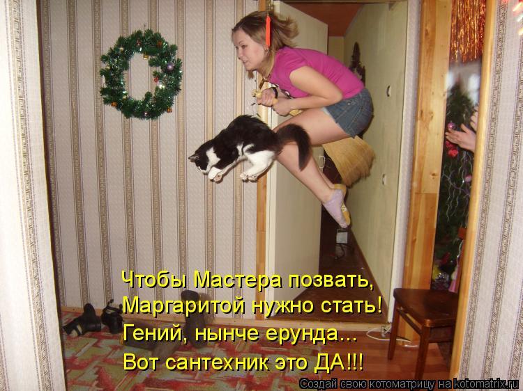 Котоматрица: Чтобы Мастера позвать, Маргаритой нужно стать!  Гений, нынче ерунда... Вот сантехник это ДА!!!