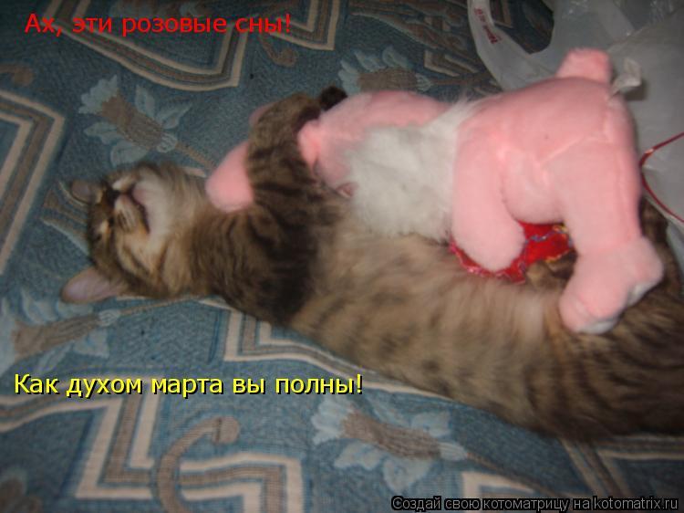 Котоматрица: Ах, эти розовые сны! Как духом марта вы полны!