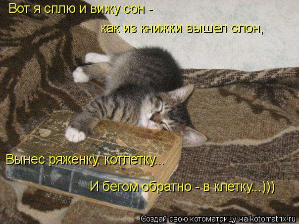 Котоматрица: Вот я сплю и вижу сон - как из книжки вышел слон, Вынес ряженку, котлетку... И бегом обратно - в клетку...)))