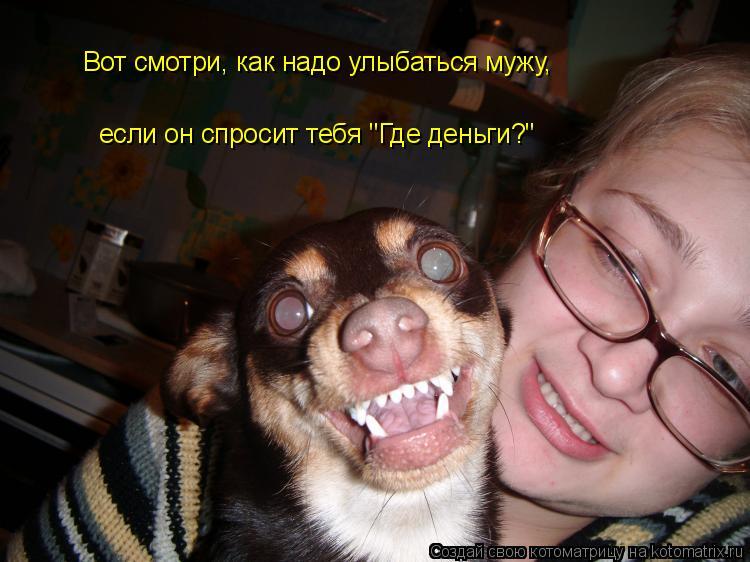 """Котоматрица: Вот смотри, как надо улыбаться мужу,  если он спросит тебя """"Где деньги?"""""""