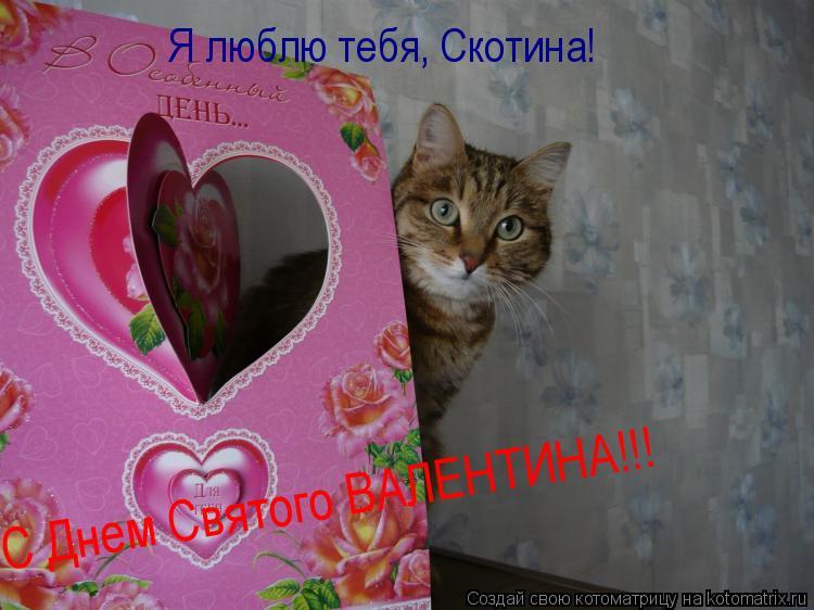 Котоматрица: Я люблю тебя, Скотина! С Днем Святого ВАЛЕНТИНА!!!
