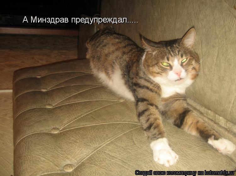 Котоматрица: А Минздрав предупреждал.....
