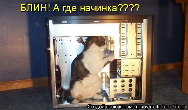 Котоматрица: БЛИН! А где начинка????