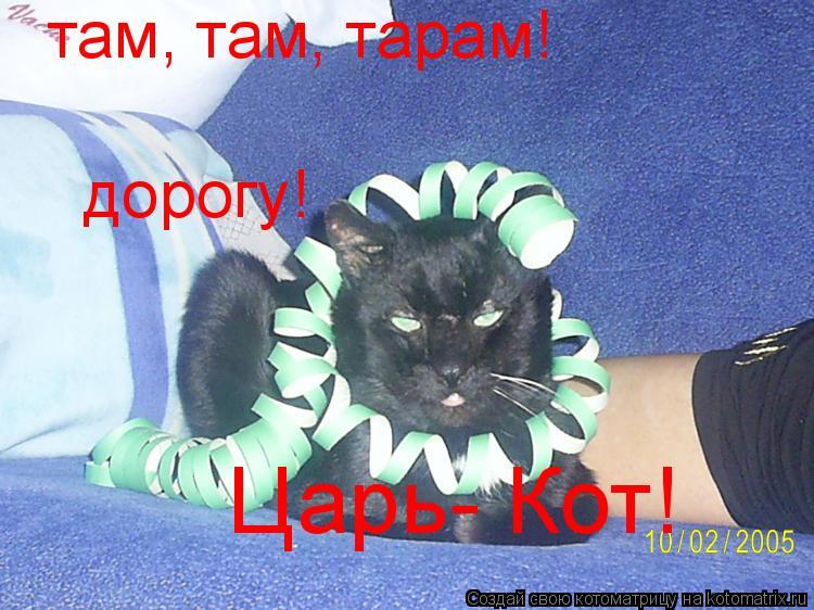 Котоматрица: Царь- Кот! там, там, тарам! дорогу!