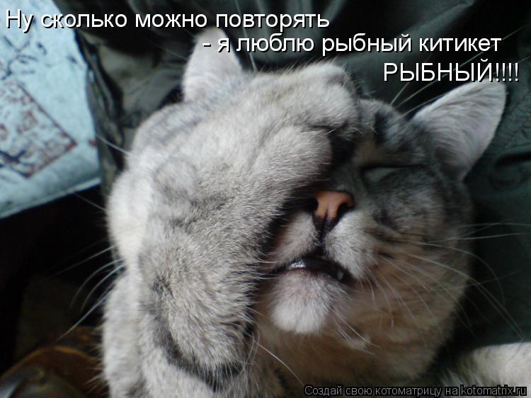 Котоматрица: Ну сколько можно повторять  - я люблю рыбный китикет РЫБНЫЙ!!!!