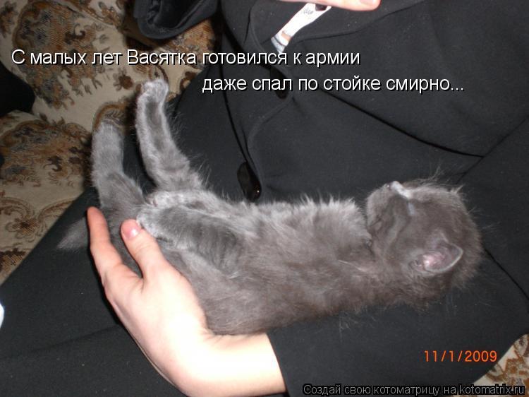 Котоматрица: С малых лет Васятка готовился к армии даже спал по стойке смирно...