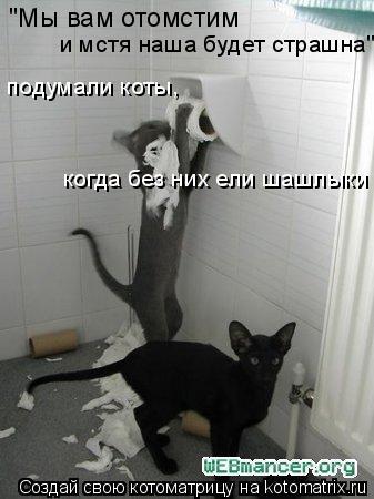 """Котоматрица: """"Мы вам отомстим и мстя наша будет страшна"""" подумали коты,  когда без них ели шашлыки"""