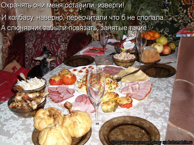 Котоматрица: И колбасу, наверно, пересчитали что б не слопала….. А слюнявчик забыли повязать, занятые такие….. Охранять они меня оставили, изверги!