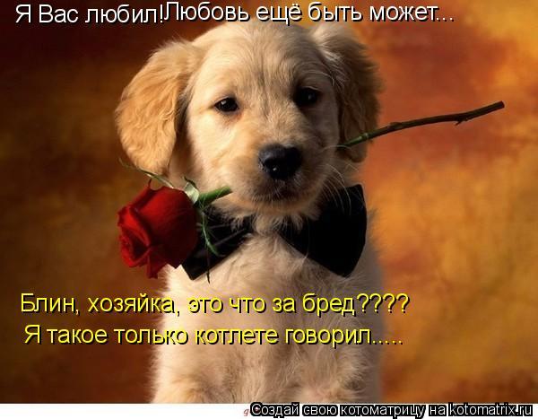 Котоматрица: Я Вас любил! Любовь ещё быть может... Блин, хозяйка, это что за бред???? Я такое только котлете говорил.....