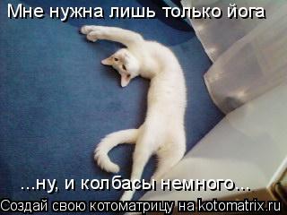 Котоматрица: Мне нужна лишь только йога ...ну, и колбасы немного...