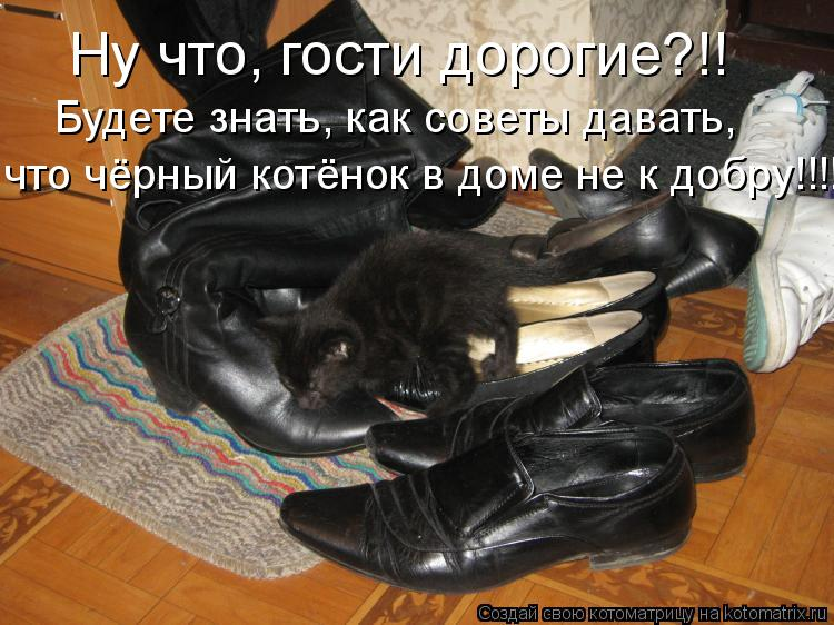 Котоматрица: Ну что, гости дорогие?!! Будете знать, как советы давать, что чёрный котёнок в доме не к добру!!!!