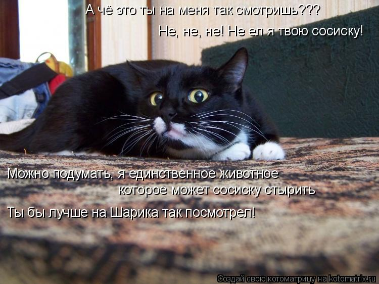 Котоматрица: А чё это ты на меня так смотришь??? Не, не, не! Не ел я твою сосиску! Можно подумать, я единственное животное которое может сосиску стырить Ты б