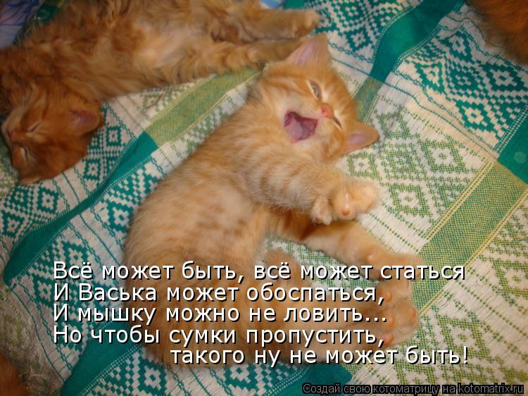 Котоматрица: Всё может быть, всё может статься И Васька может обоспаться, И мышку можно не ловить... Но чтобы сумки пропустить,  такого ну не может быть!