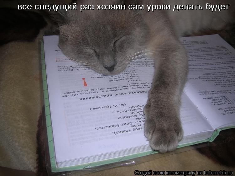 Котоматрица: все следущий раз хозяин сам уроки делать будет
