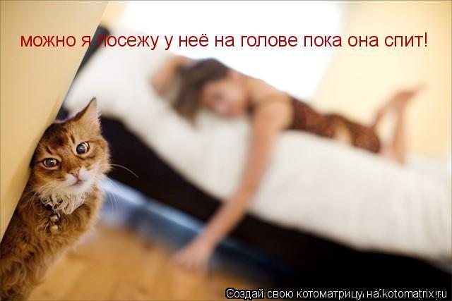 Котоматрица: можно я посежу у неё на голове пока она спит!