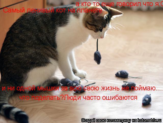 Котоматрица: а кто то еще говорил что я:Самый ленивый кот на планете и ни одной мышки за всю свою жизнь не поймаю....что поделать?Люди часто ошибаются Самы