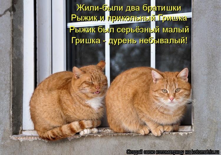 Котоматрица: Жили-были два братишки Рыжик и прикольный Гришка Рыжик был серьёзный малый Гришка - дурень небывалый!
