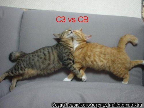 Котоматрица: СЗ vs СВ