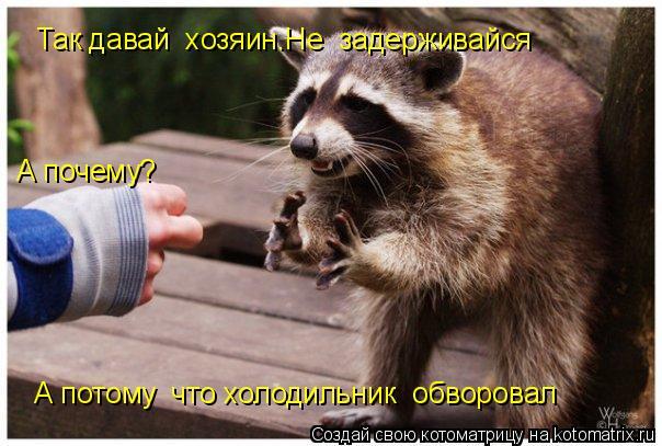 Котоматрица: Так давай  хозяин.Не  задерживайся А почему? А потому  что холодильник  обворовал