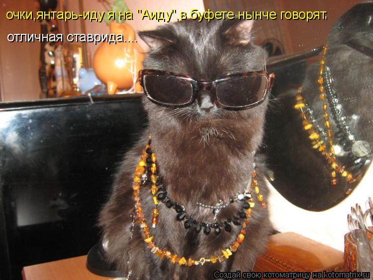 """Котоматрица: очки,янтарь-иду я на """"Аиду"""",в буфете нынче говорят  , отличная ставрида...."""